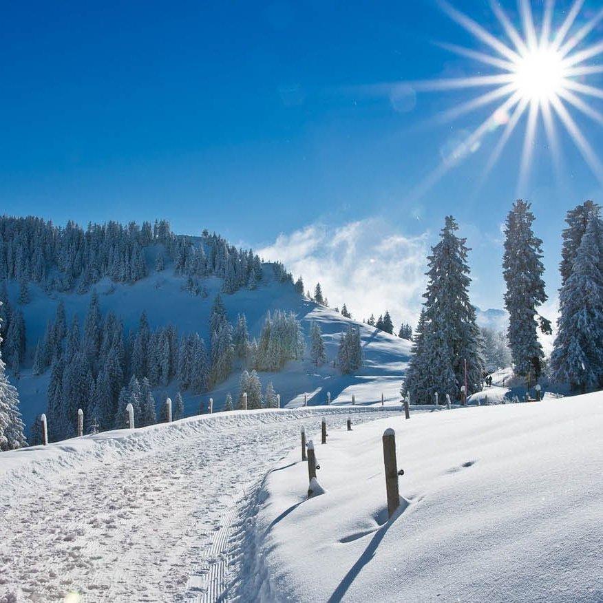 В 11 областях вночі похолодає до 25 градусів морозу