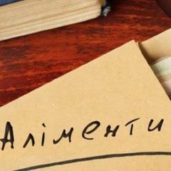 Ветеран АТО заборгував синам аліментів на 200 тисяч гривень