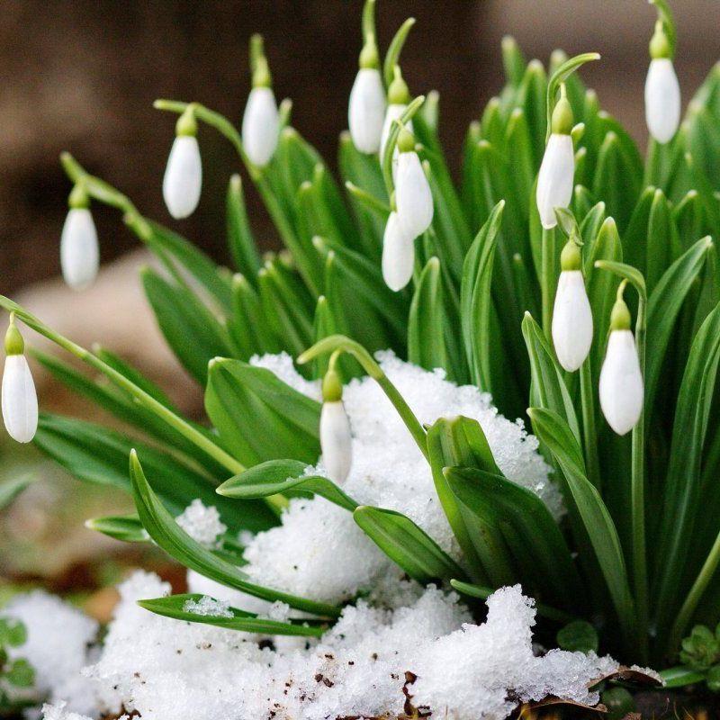 Зустрічаємо весну: 10 простих правил, щоб бути у гарній формі