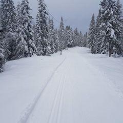 В Україні сьогодні місцями пройде сніг, у деяких областях трохи потепліє (карта)