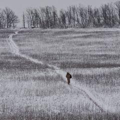 У Мінську оголосили про повне та безстрокове перемир'я на Донбасі з 5 березня - ЗМІ
