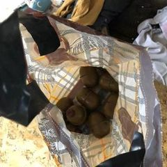 У наметовому таборі на Грушевського затримано 50 осіб. Виявлено гранати – поліція