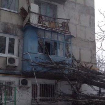 Дерево завалилось на житловий будинок у Херсоні: моторошний момент падіння