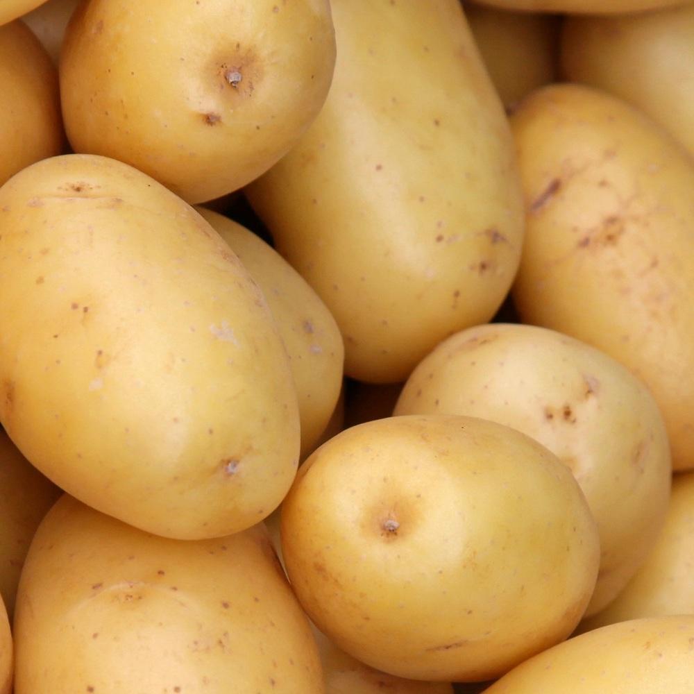 Стало відомо, яка країна купила найбільше української картоплі минулого року