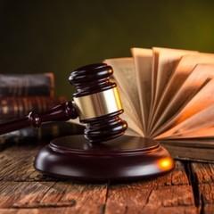 Сину заступника глави МОН за розбій присудили нічний арешт