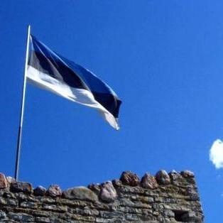 Естонія поскаржилась, що російський військовий літак порушив її повітряний простір