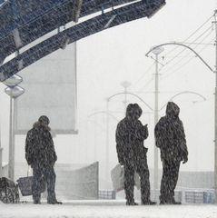 65% українців не хочуть переїжджати за кордон - опитування