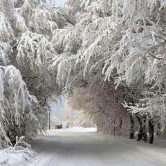 Прогноз погоди на 18 березня: в Україну заходять два холодних циклони