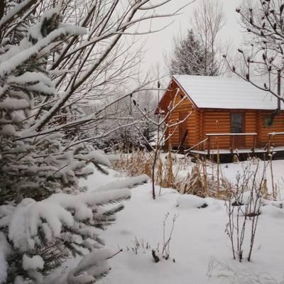 Синоптик попередила про новий циклон із мокрим снігом і хуртовинами