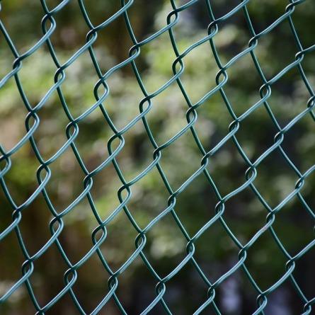 Польща почне будувати паркан на кордоні з Україною і Білоруссю