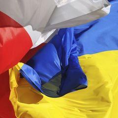 Українські заробітчани у Польші: лише 4% займаються інтелектуальною працею - дослідження