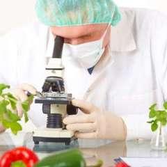В Україні будуть по-новому контролювати якість продуктів
