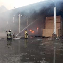 Нова масштабна пожежа в Росії: спалахнув деревообробний завод (фото)