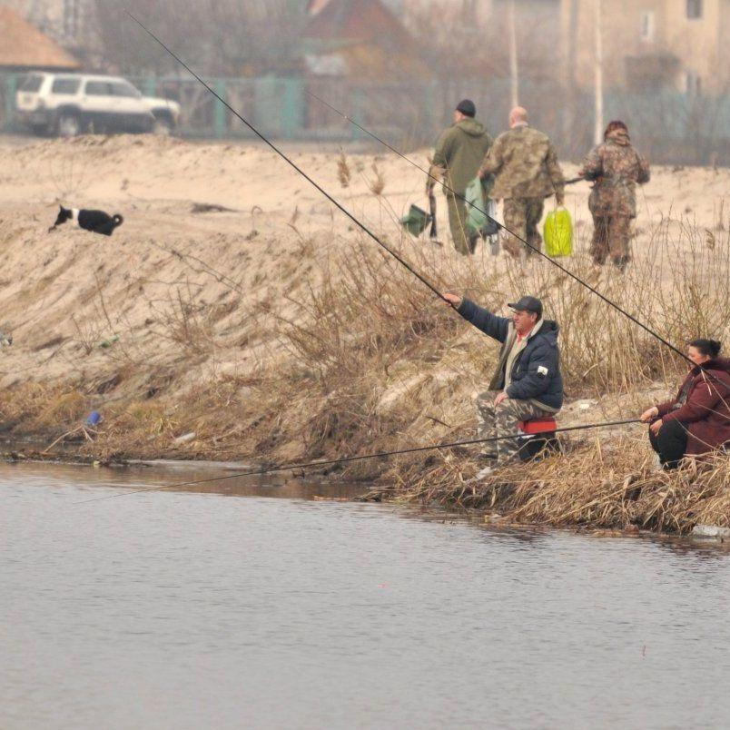 З 1 квітня в Україні заборонений вилов риби