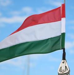 В Угорщині бойовика ДНР засудили до двох років умовно