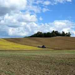 Кабмін схвалив передачу фермерам 500 тис. га землі