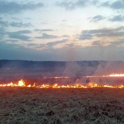 Синоптики попереджають про пожежну небезпеку в Україні