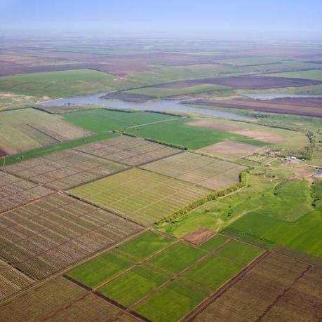 Українці стали лідерами з купівлі землі в Польщі