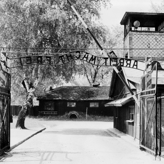 У Німеччині висунули звинувачення 94-річному охоронцю Аушвіца
