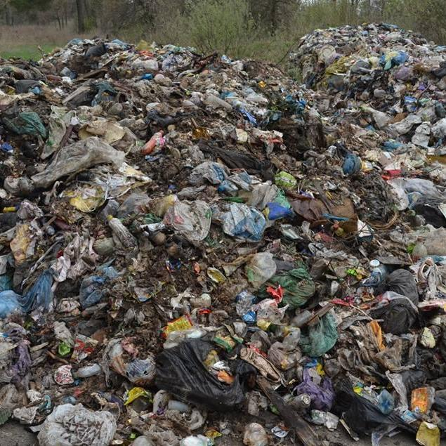На Житомирщині знову скинули 90 тонн сміття зі Львова