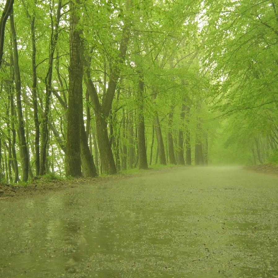 В Україні сьогодні місцями пройдуть дощі, на півдні та заході до +21° (карта)