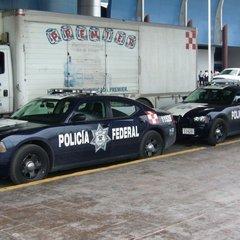 У Мексиці розлючена юрба кинула молодого ґвалтівника у вольєр з крокодилами