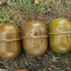 На Луганщині біля залізничної колії знайдено понад 10 гранат і тротил