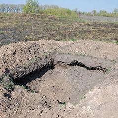 На Київщині чорні археологи розкопали городище часів Київської Русі