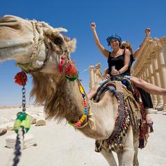 Торговців та прохачів, які чіпляються до туристів в Єгипті, штрафуватимуть