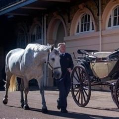 Принц Гаррі і Меган Маркл вибрали карету для весільної процесії