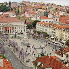 Євробачення-2018: журналіста в Лісабоні поранили ножем