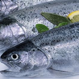 Харчуйся корисно: продукти, що продовжують життя