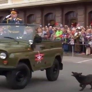 На параді у «ДНР» дворовий пес облаяв «міністра оборони» терористів