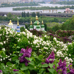 У Києві цього травня зафіксували вже 12 температурних рекордів