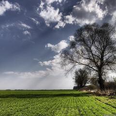 Погода на вихідні: в Україні похолоднішає до +14 і пройдуть дощі з грозами