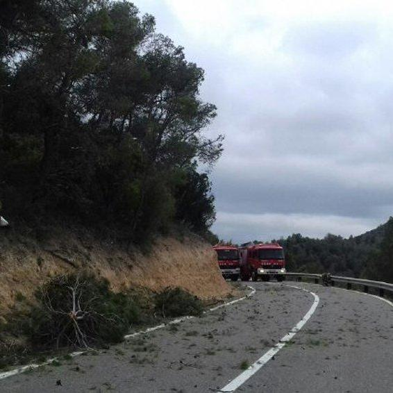 В Іспанії розбився легкомоторний літак: троє загиблих