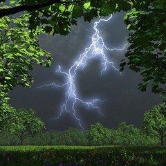 Погода на тиждень: Україну накриють дощі з грозами, температура до +28