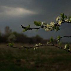 Прогноз погоди на 15 травня: в Україну повертається тепло