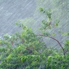 На вихідні в Україні знову прогнозують похолодання і дощі