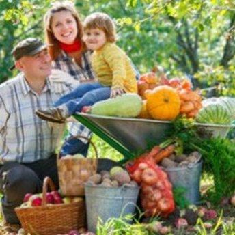 Ухвалено закон про легалізацію сімейних ферм
