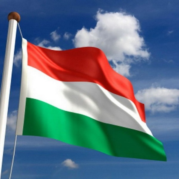 Угорщина офіційно ініціює в НАТО перегляд всіх програм підтримки України