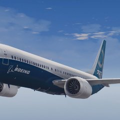 Україна виставила на торги російський величезний Boeing 737