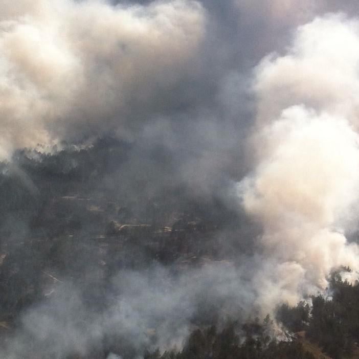 На Херсонщині горить близько 50 га лісу (фото)
