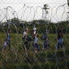 На кордоні Хорватії заповнений мігрантами фургон пішов на прорив