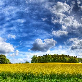 Сьогодні по всій Україні очікується сонячна погода (карта)