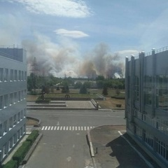У Чорнобилі горить 10 га радіаційно забрудненого лісу