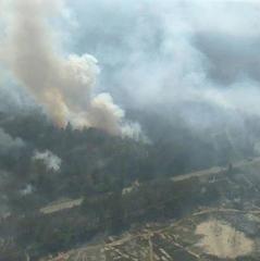 Пожежа у Чорнобильській зоні: поліція відкрила кримінальне провадження