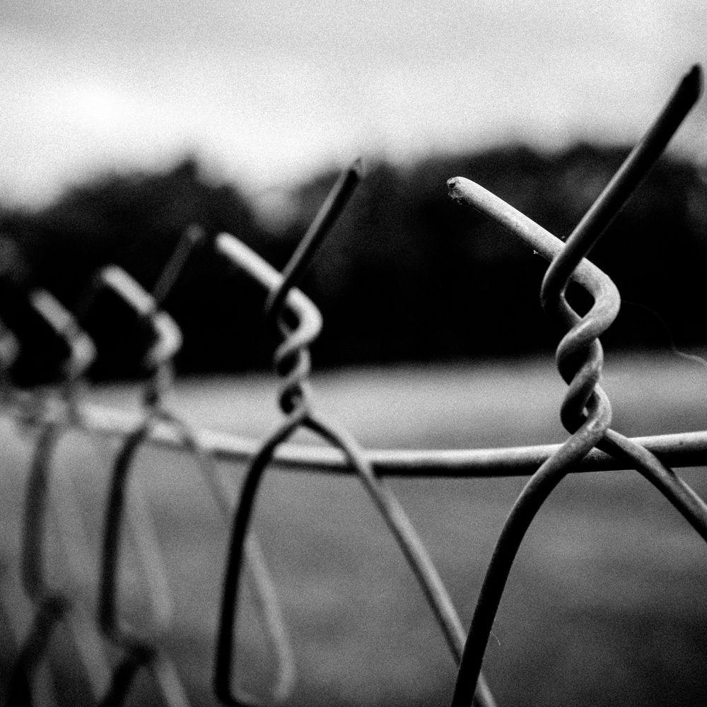 Порошенко з Путіним по телефону обговорили питання обміну ув'язнених