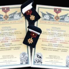В столичному музеї експонуватимуться дві найвищі військові нагороди УПА (фото)