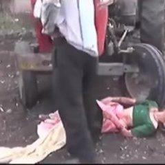 В Індії чоловік кинув матір під колеса трактора (відео)
